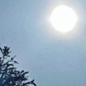 二月の満月